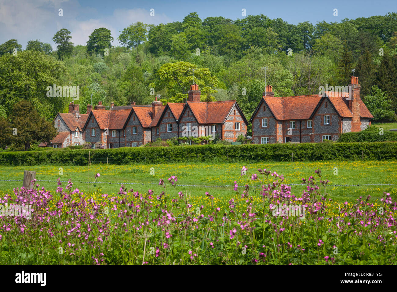 Traditional brick and flint cottages at Hambleden, Buckinghamshire with pink wild flowers in the foreground - Stock Image