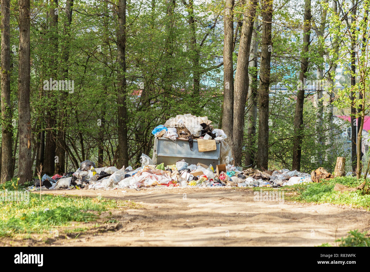 Garbage dump in the forest. Pollution of nature. - Stock Image