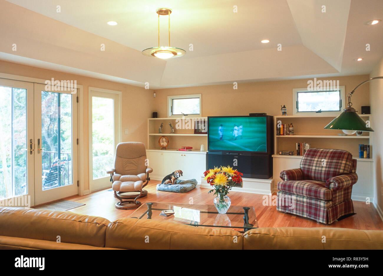 Livingroom Interior, USA - Stock Image