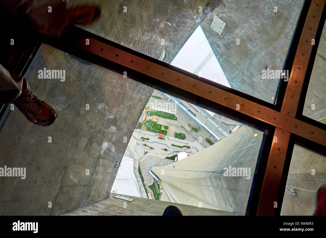Man S Feet On The Glass Floor Of The Cn Tower 350 Meters Above