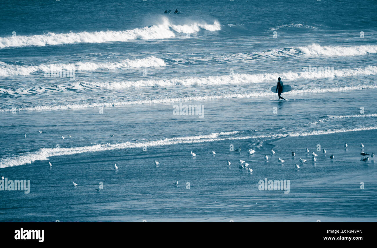 Surfer heading out at Saltburn by the sea, North Yorkshire, England. UK - Stock Image