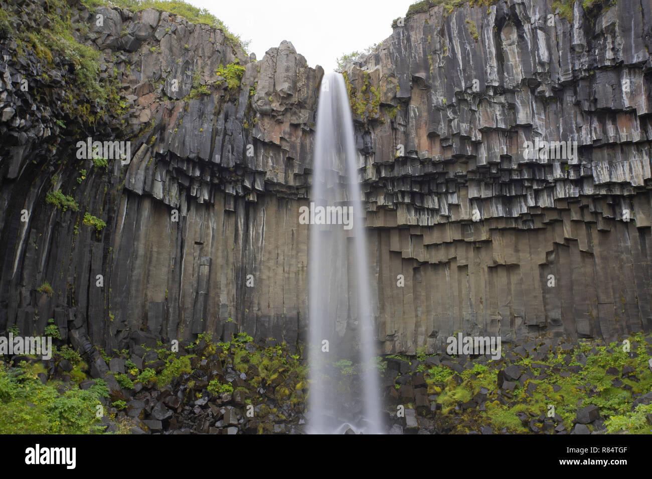 Svartifoss Waterfall and basalt columns, Iceland - Stock Image