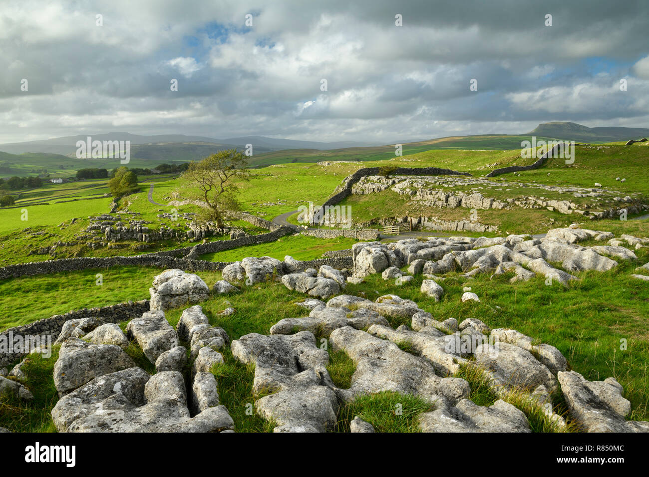 Beautiful view over limestone pavement & rolling upland countryside from Winskill Stones - near Langcliffe & Stainforth, Yorkshire Dales, England, UK. Stock Photo