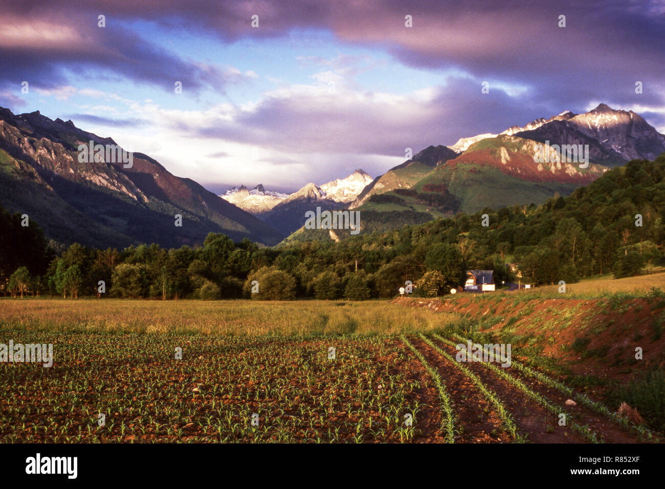 The Valley of Arrens looking towards  the Balaitous massif.Department of Pyrenees-Atlantiques. - Stock Image