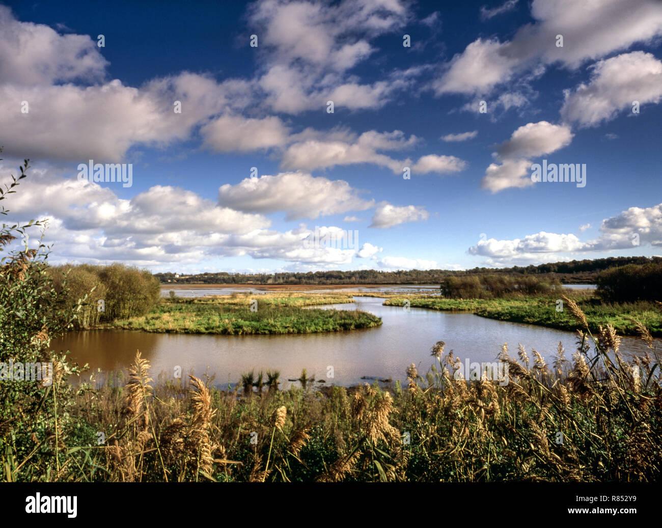 France.Marais D'Orx Nature Reserve on the Atlantic coast near Bayonne. - Stock Image