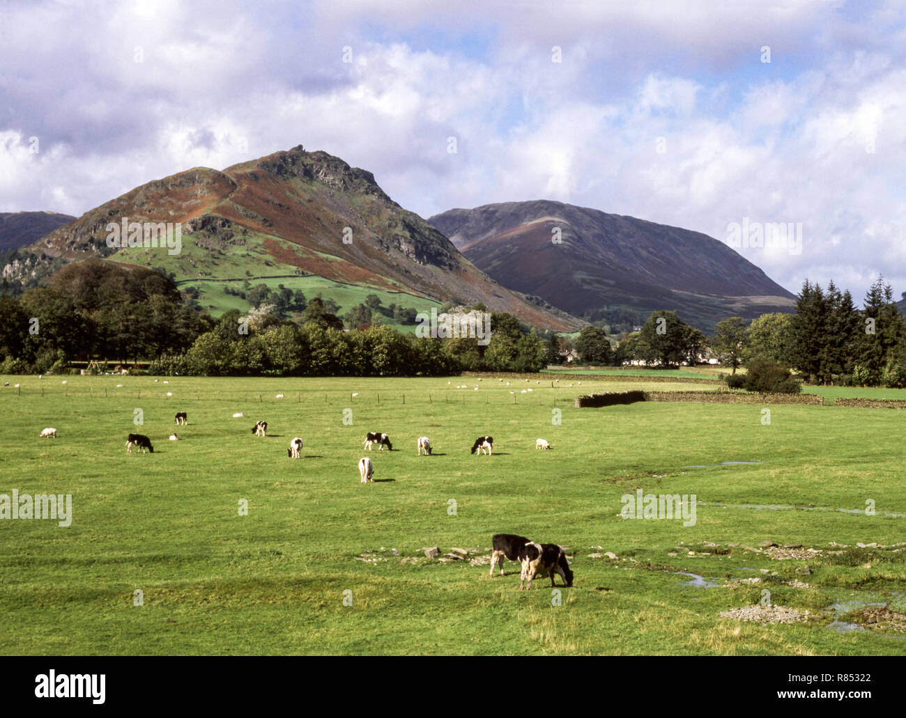 The English Lake District. Grasmere. Helm crag (396m) & Steel Fell - Stock Image