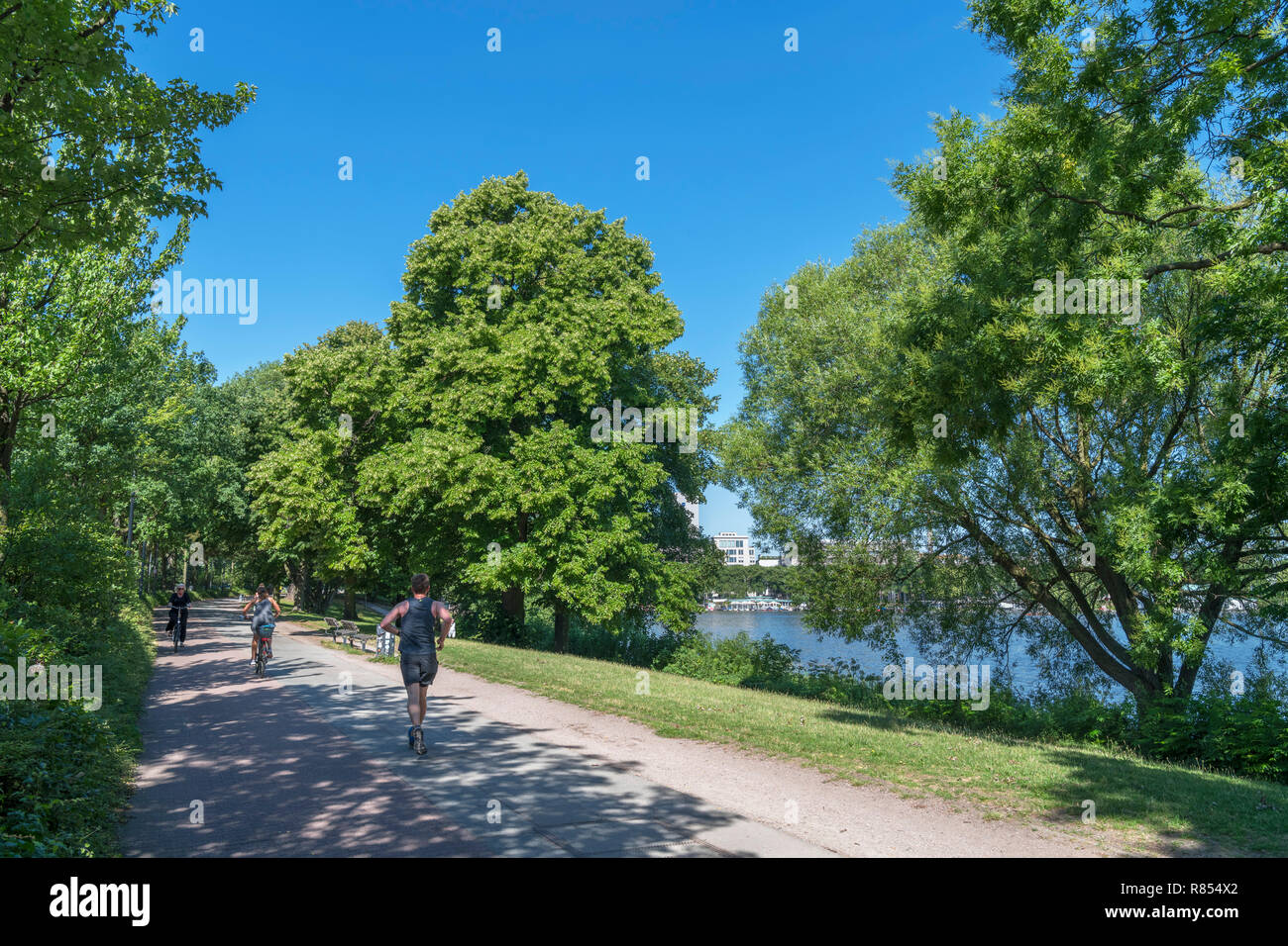 Runner and cyclists on the path alongside the Außenalster (Aussenalster), an artificial lake in Hamburg, Germany - Stock Image