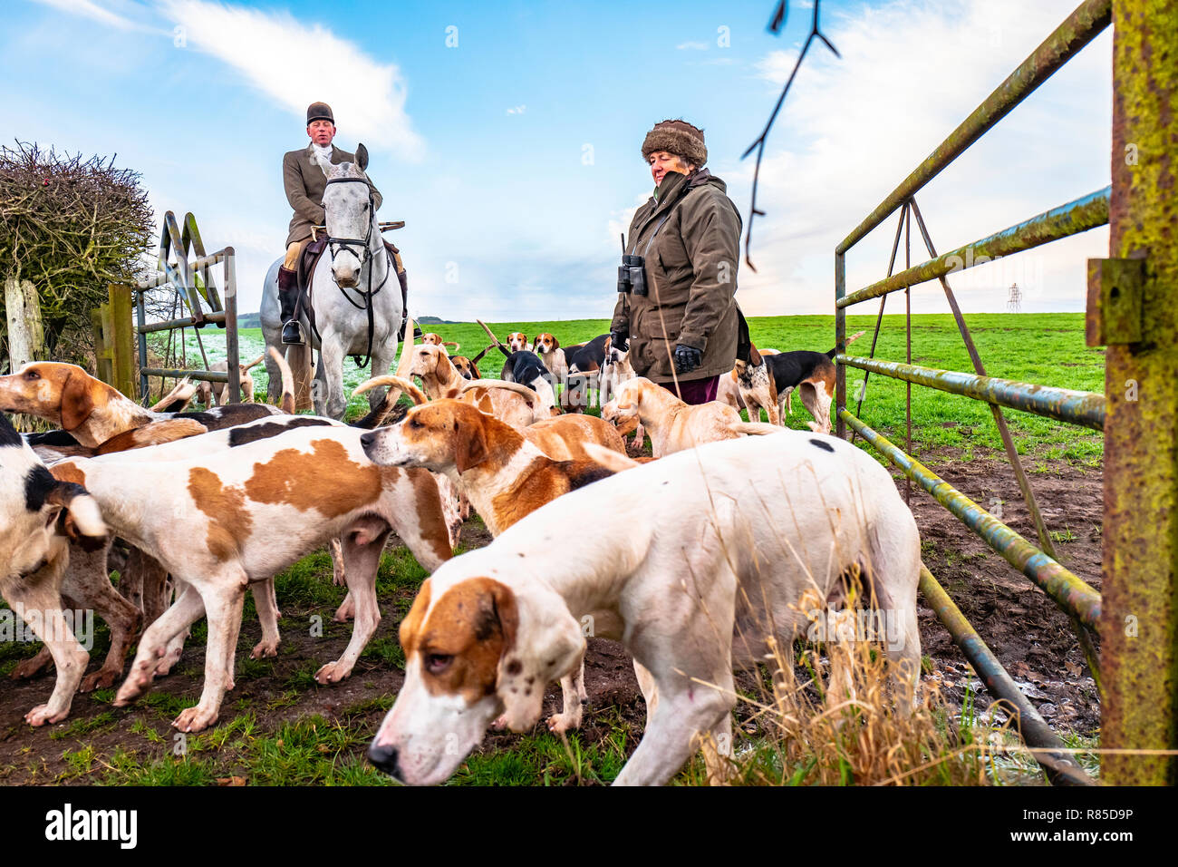 Mellerstain, Kelso, Scottish Borders, UK. 10th December 2018. Huntsman Tim Allen and the Duke of Buccleuch of Foxhounds meet at the home of the 14th E - Stock Image