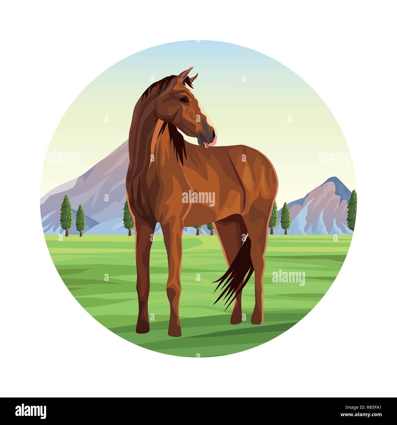 Horse Farm Animal Stock Vector Image Art Alamy