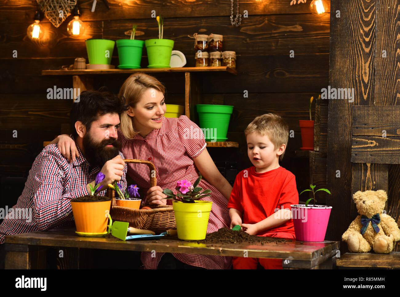 Design concept. Family potting flowers, design. Eco design in home interior. Floral design - Stock Image