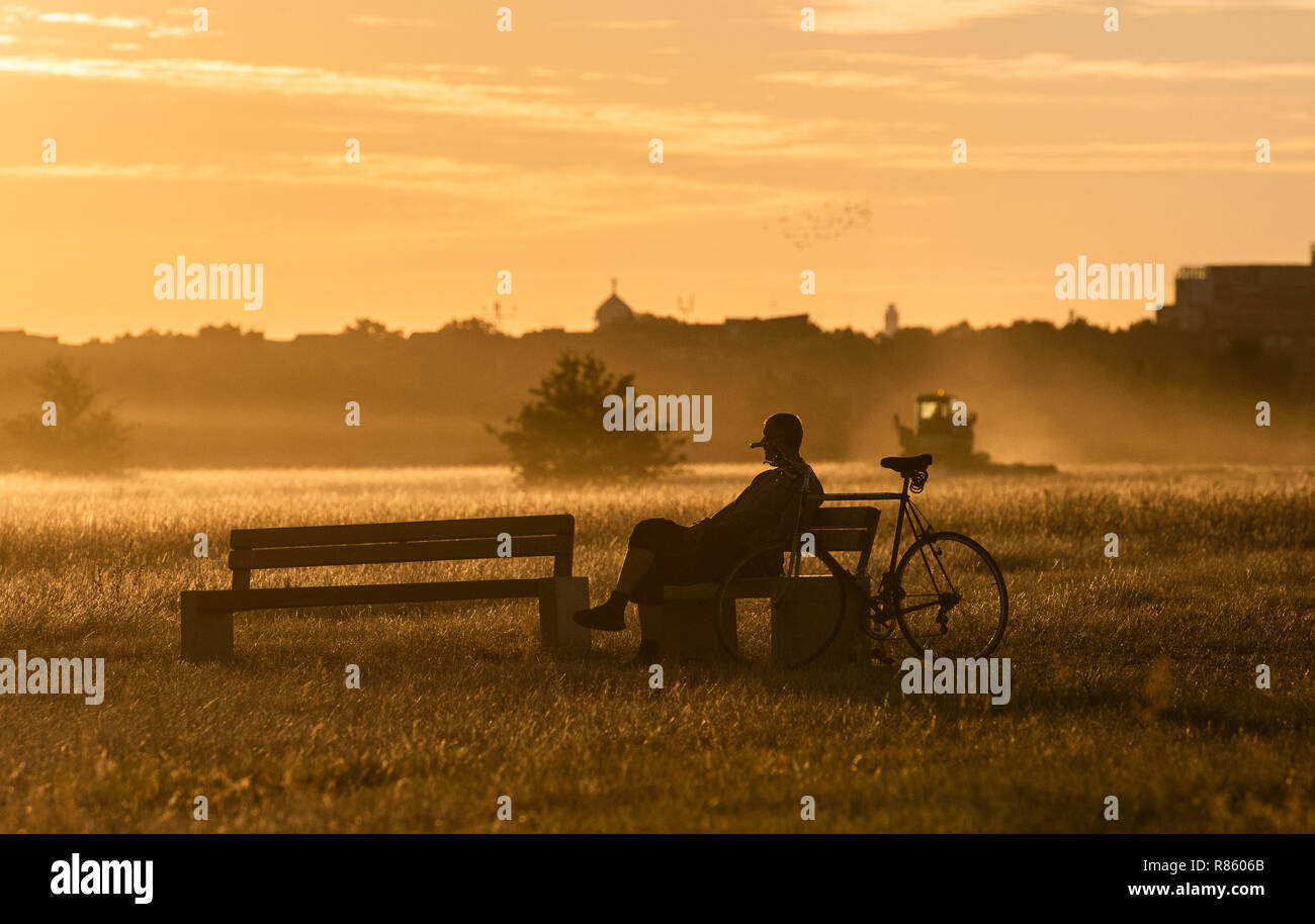 Berlin, Germany. 13th Aug, 2018. A man enjoys the morning atmosphere in the light of the rising sun on the Tempelhofer Feld. Credit: Paul Zinken/dpa | usage worldwide/dpa/Alamy Live News - Stock Image