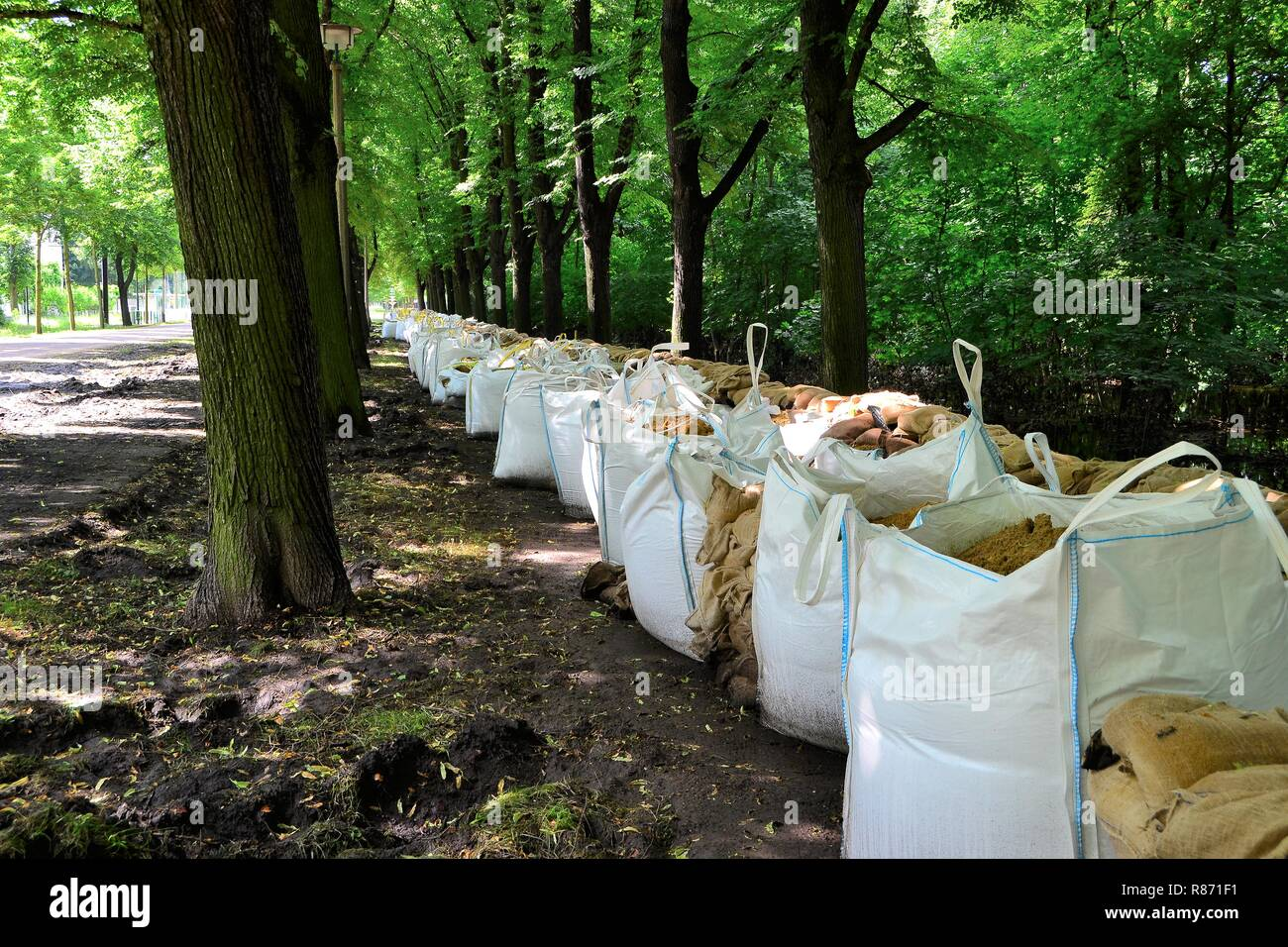 Flood protection in a park during the flood in Magdeburg Stock Photo