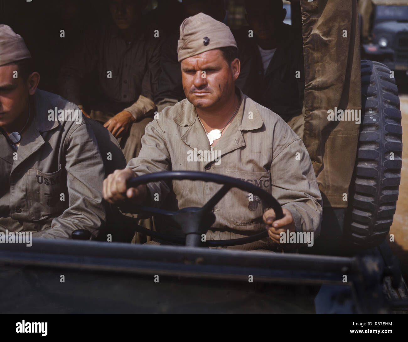 Marine Truck Driver, Marine Corps New River Air Station, Jacksonville, North Carolina, USA, Alfred T. Palmer for Office of War Information, May 1942 - Stock Image