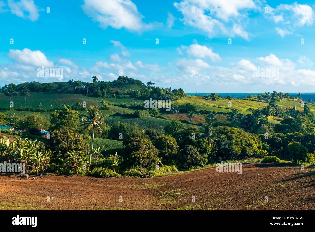 Farm lands of Batulao in the province of Batangas, Philippines - Stock Image