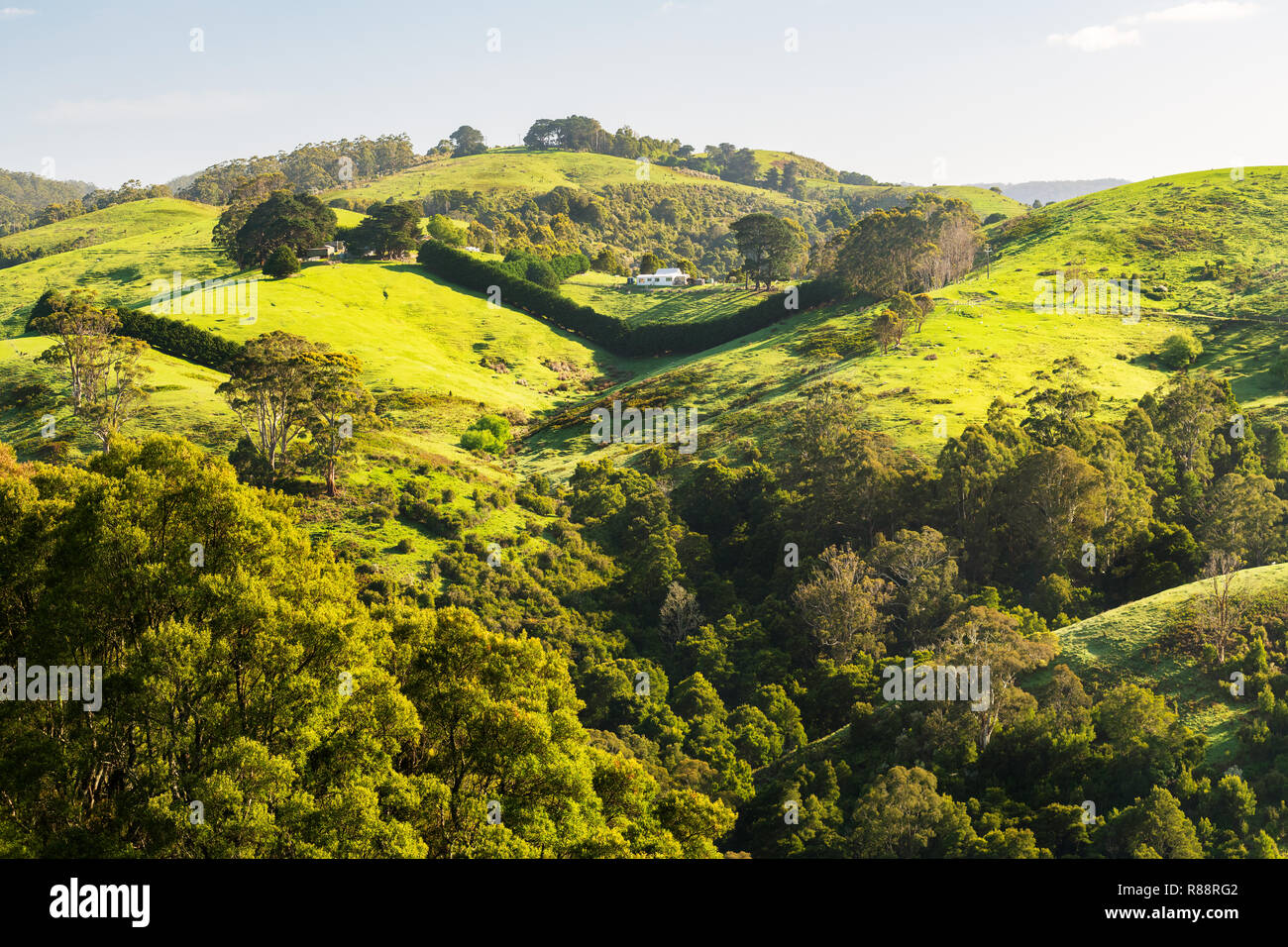 Rolling hills in the hinterland of Apollo Bay at the famous Great Ocean Road. - Stock Image