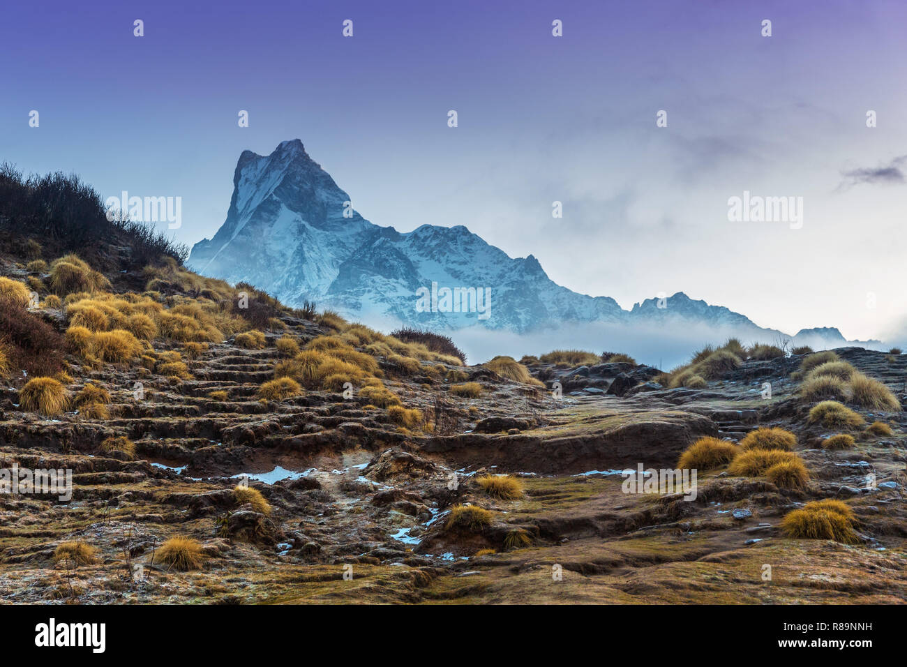 View of Machapuchare Mountain, Fishtail Peak, on Mardi Himal trail in the Annapurna Himal, Nepal, Himalayas, Asia - Stock Image