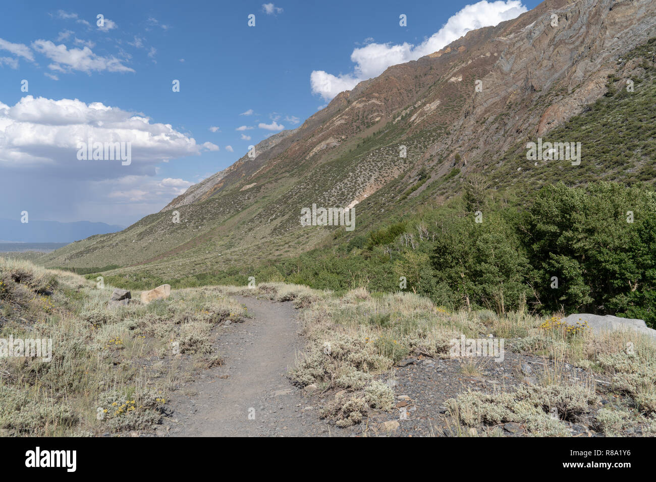 Hiking trail in McGee Creek Canyon in the Eastern Sierra Nevada mountains of California - Stock Image