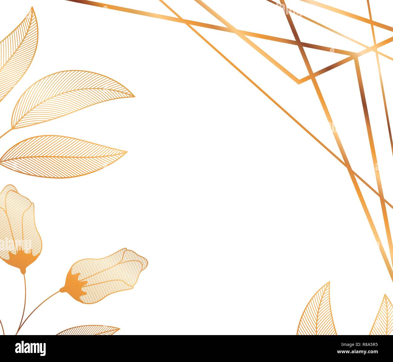 flowers with leaves and geometrical lines - Stock Image