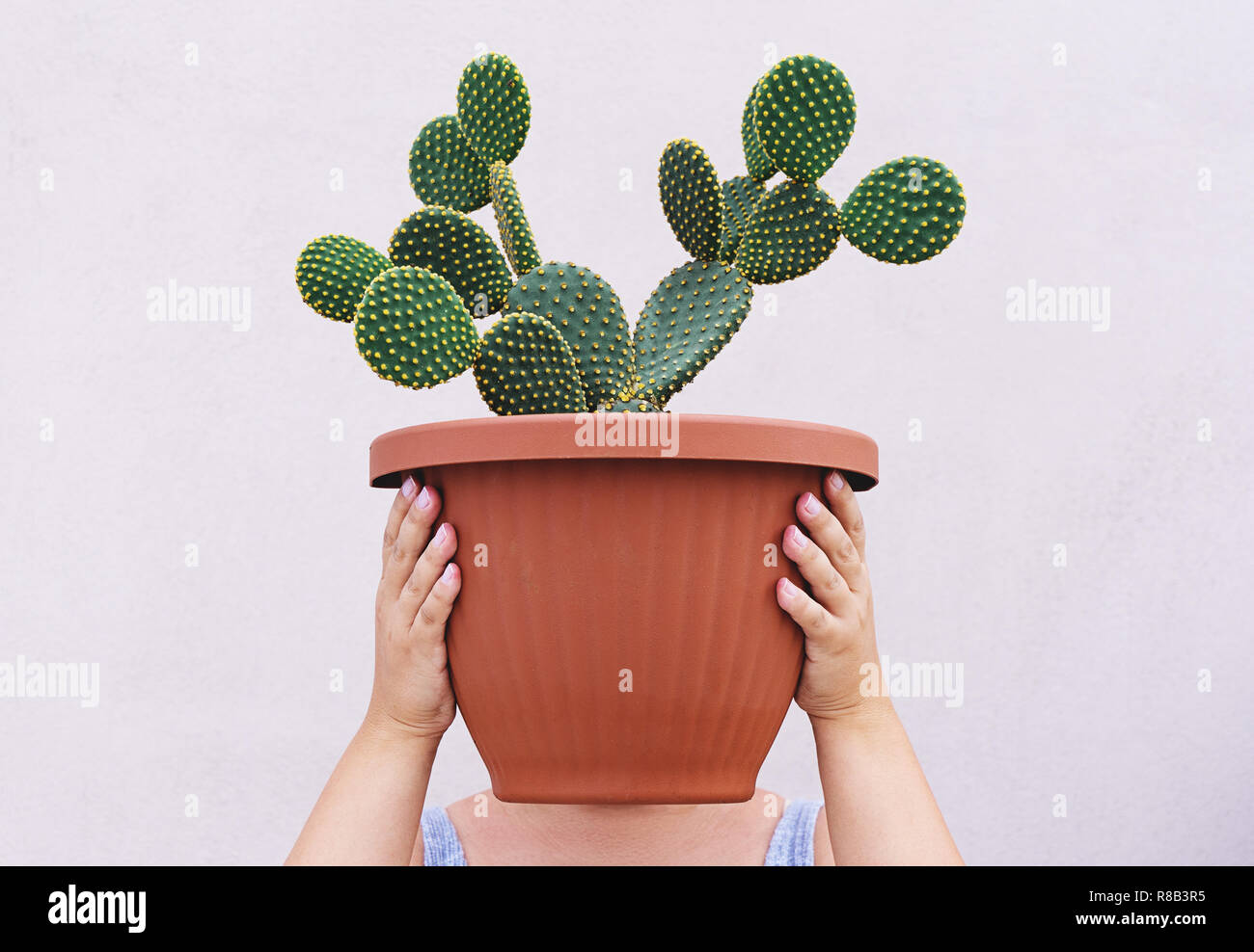 Woman is holding large red pot with Opuntia cactus at face level. Conceptual realism faceless portrait - Stock Image