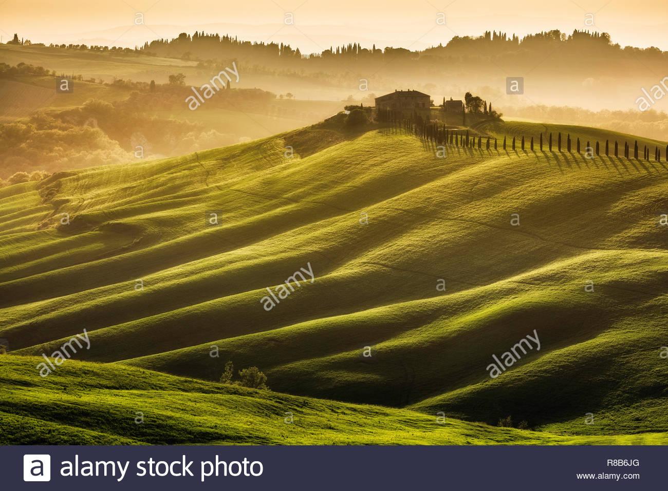 Rolling farmland near Asciano, La Crete Senesi, Tuscany Stock Photo
