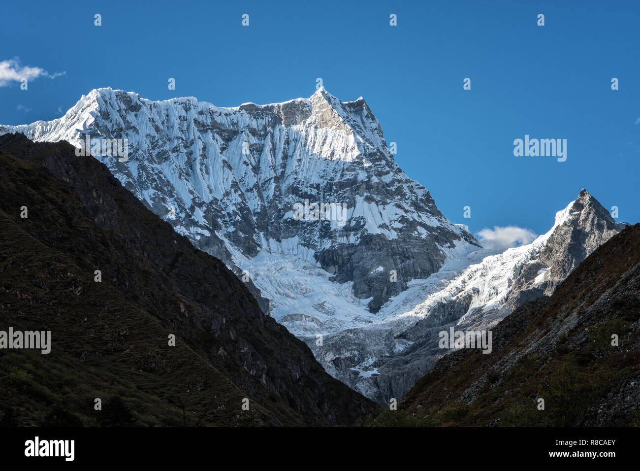 Gangchhenta (Great Tiger Mountain), Gasa District, Snowman Trek, Bhutan Stock Photo