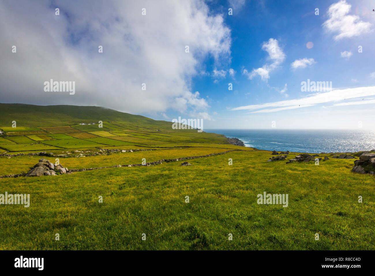 stonewalls on Mizen Peninsula, West Cork - Stock Image