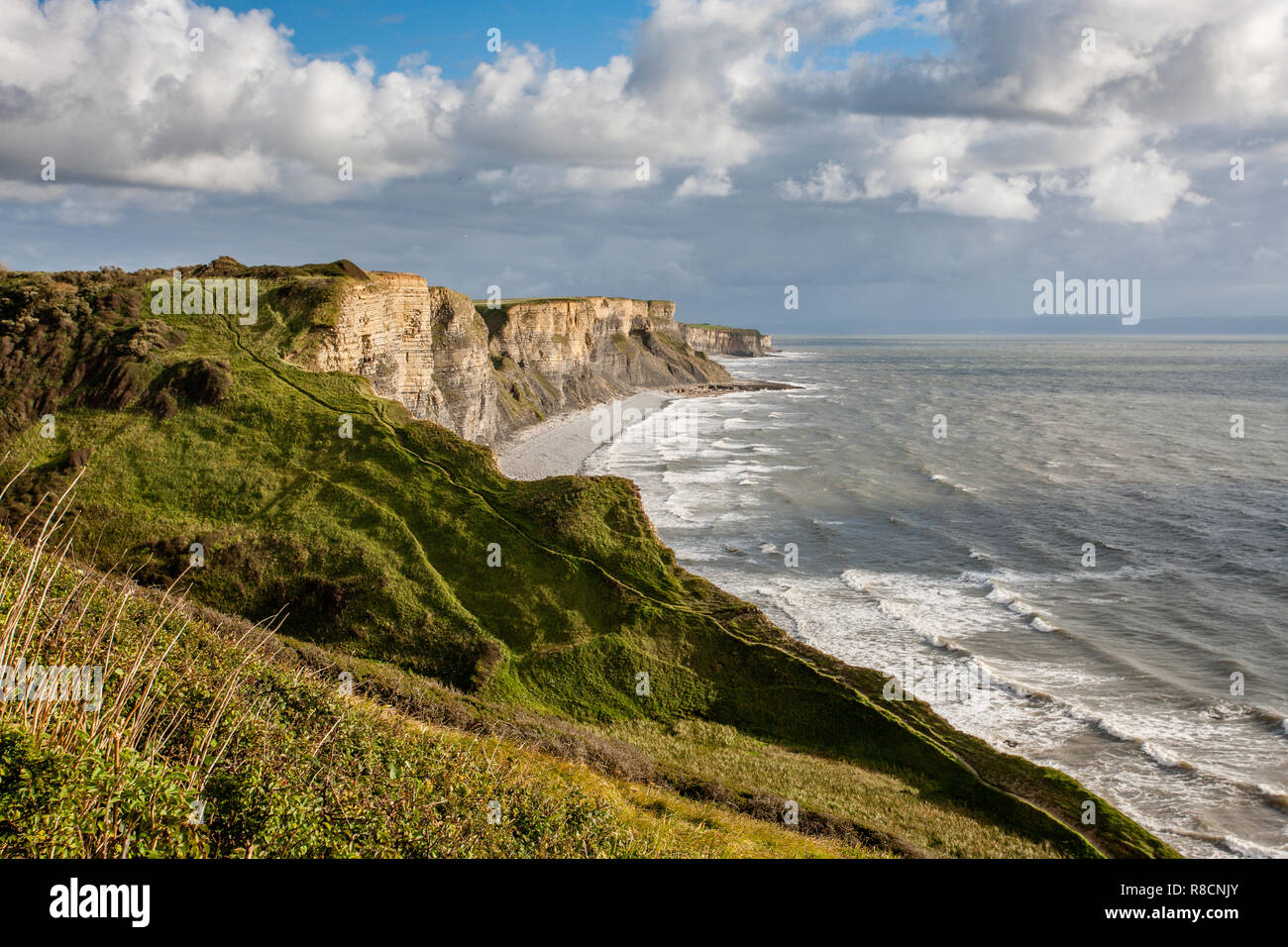 Jurassic lias limestone cliffs of the Glamorgan Heritage Coast in South Wales UK - Stock Image