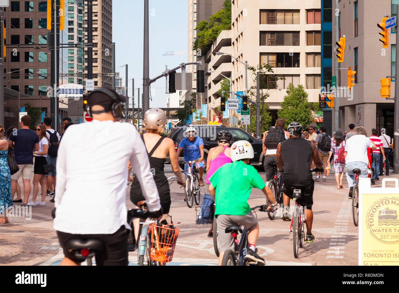 Cyclists using a bike lane on the Martin Goodman Trail that follows Toronto's waterfront on Queens Quay. City of Toronto, Ontario, Canada. - Stock Image