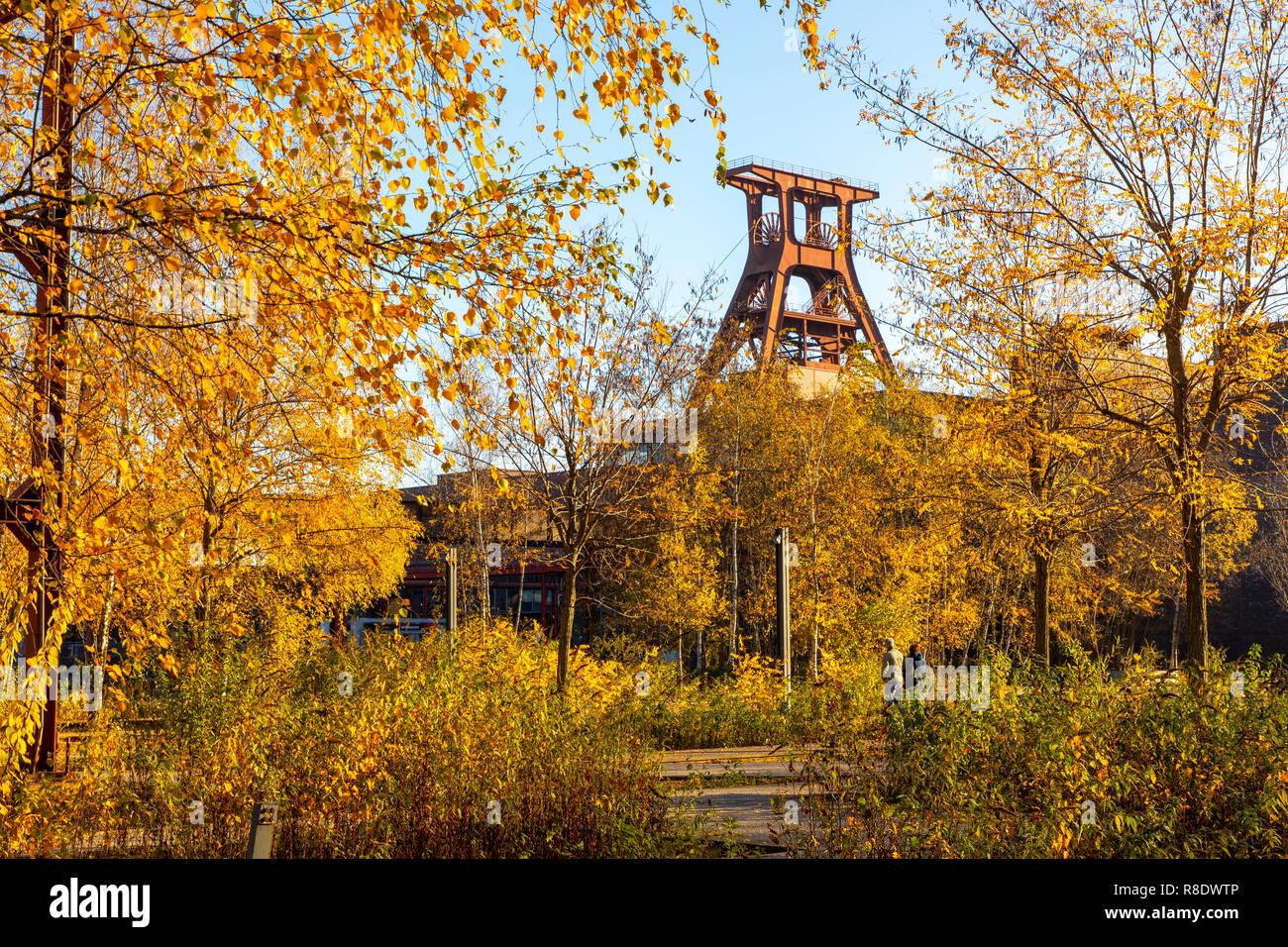 Der Zollverein Park, ehemalige Gleisanlagen, auf der Zeche Zollverein in Essen, Doppelbock Fördergerüst von Schacht XII, - Stock Image