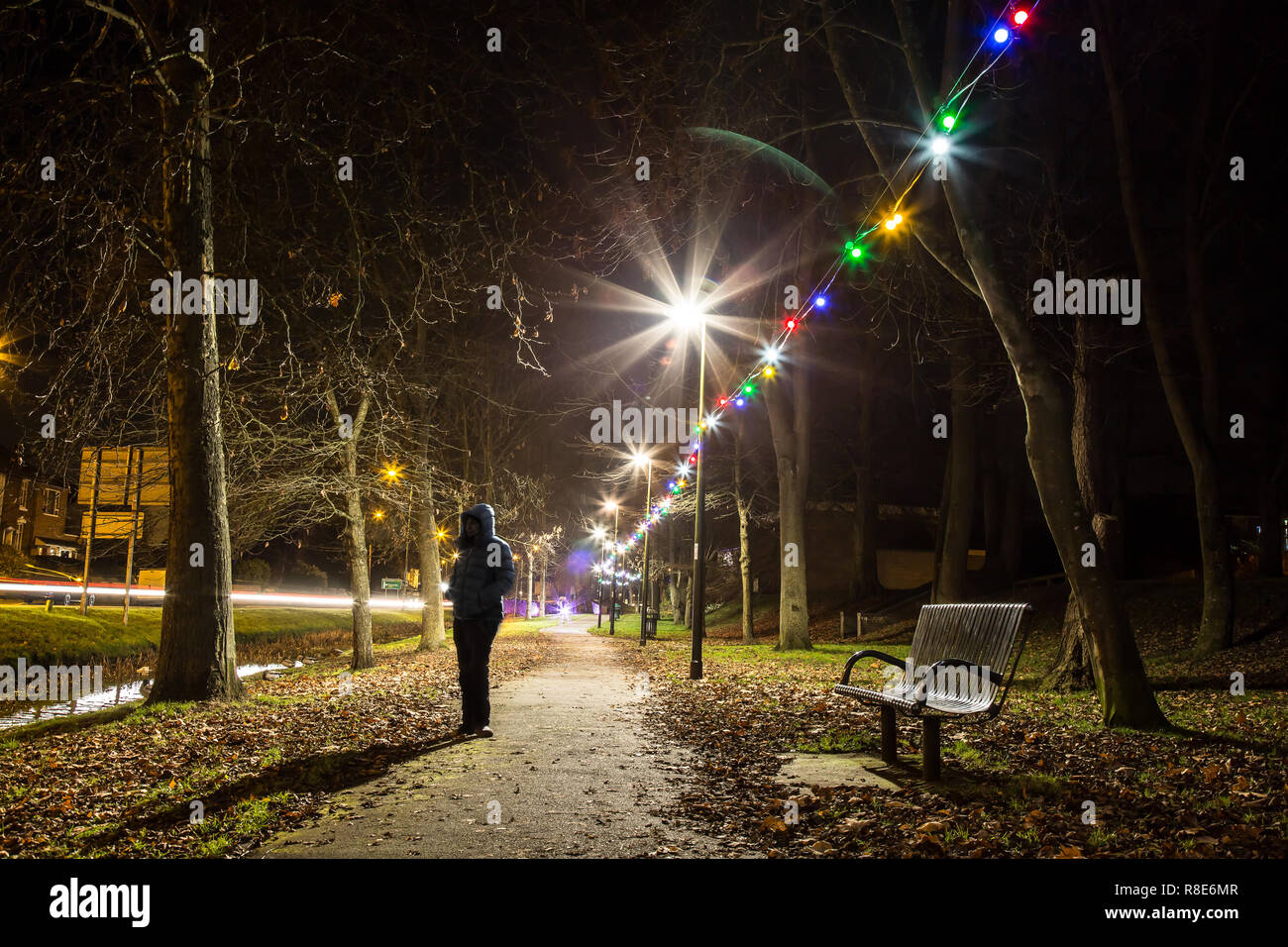 Landscape shot of solitary figure, stood on path, in public park at night time during festive period. Outdoor Christmas lights create starburst effect. - Stock Image