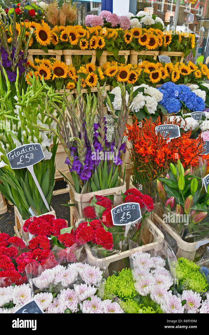 SUNDAY FLOWER MARKET, COLUMBIA ROAD, BETHNAL GREEN,TOWER HAMLETS, EAST LONDON. AUGUST 2018. The colourful Sunday morning street Flower Market is a bus Stock Photo