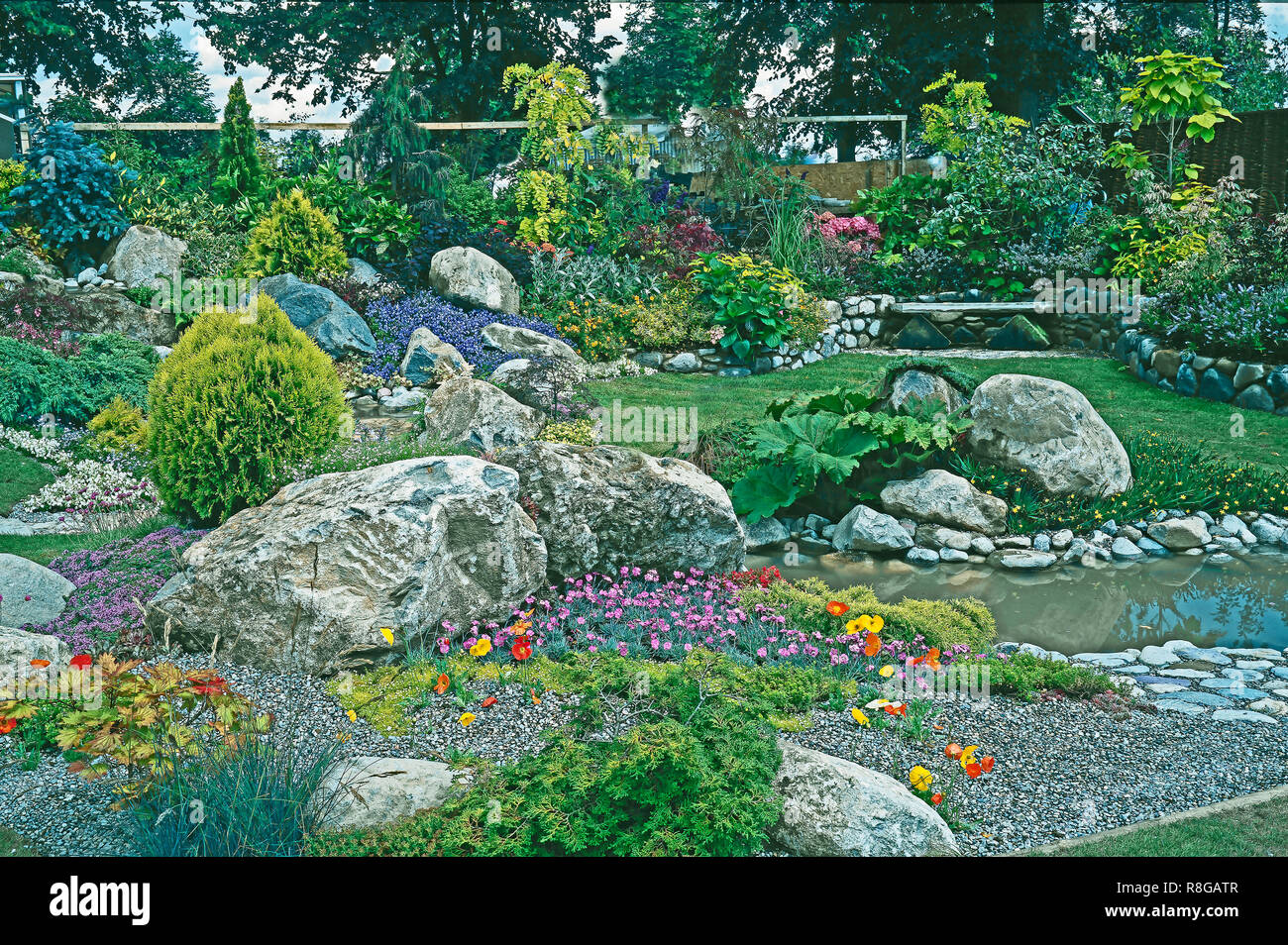 Rockery and water garden with mixed planting of alpine flowers, plants and shrubs. Stock Photo
