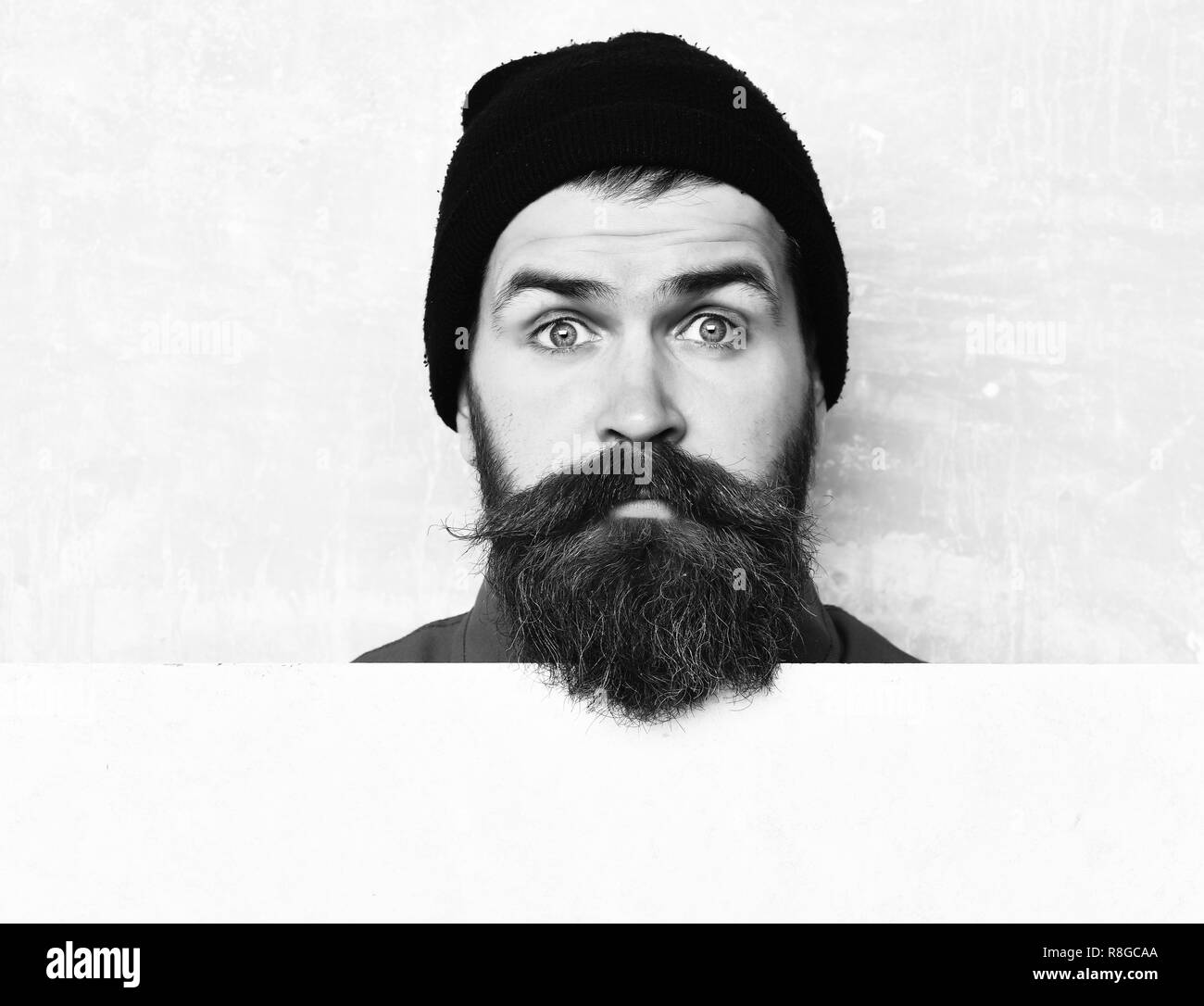 bearded man in black cap, long beard, brutal caucasian hipster with moustache getting beard haircut by hairdresser at barbershop with surprised face on green studio wall background - Stock Image