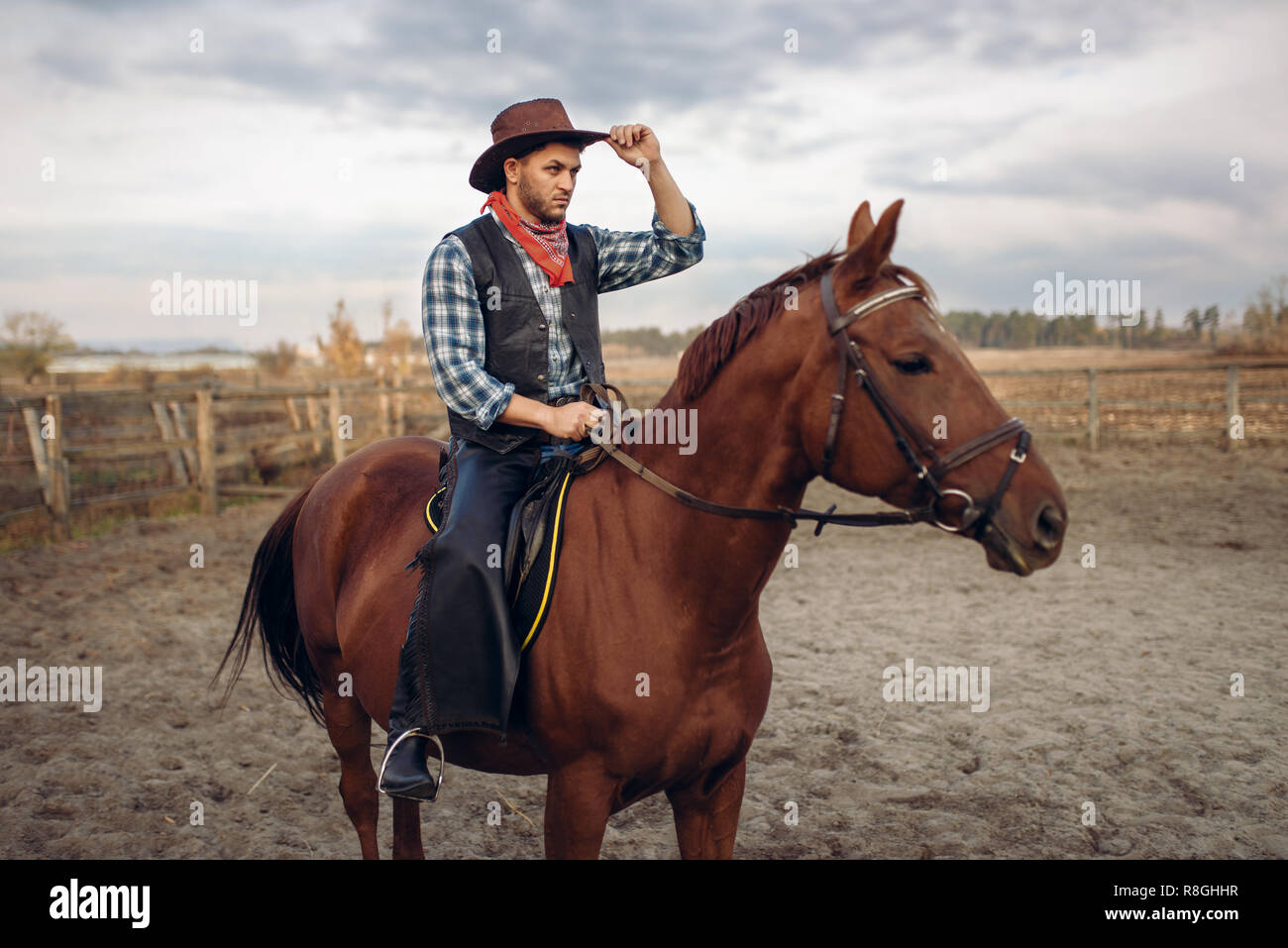 Cowboy Riding A Horse In Texas Country Saloon On Background Western Vintage Male Person On Horseback Wild West Adventure Stock Photo Alamy