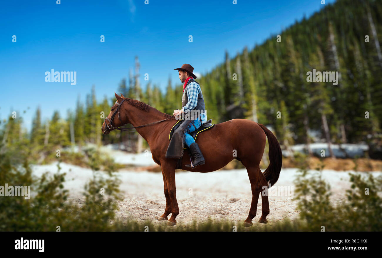 Cowboy In Jeans And Leather Jacket Riding A Horse Mountain And Forest On Background Western Vintage Male Rider On Horseback Wild West Adventure Stock Photo Alamy