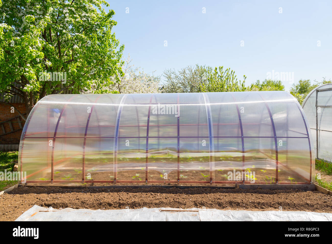 Polycarbonate greenhouse in the garden  Semicircular shape