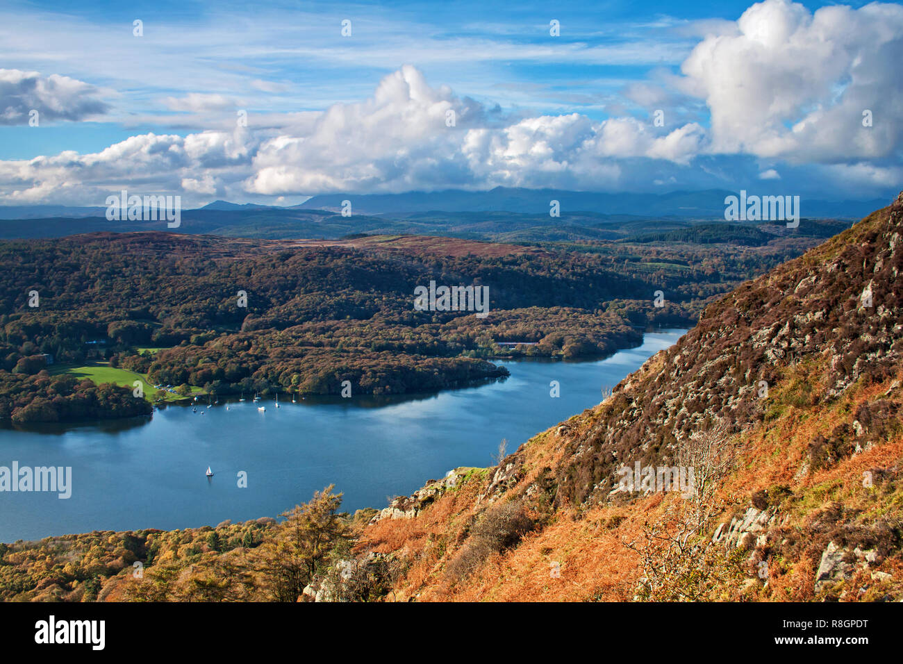 Autumn colours on the slope of Gummers How - Stock Image