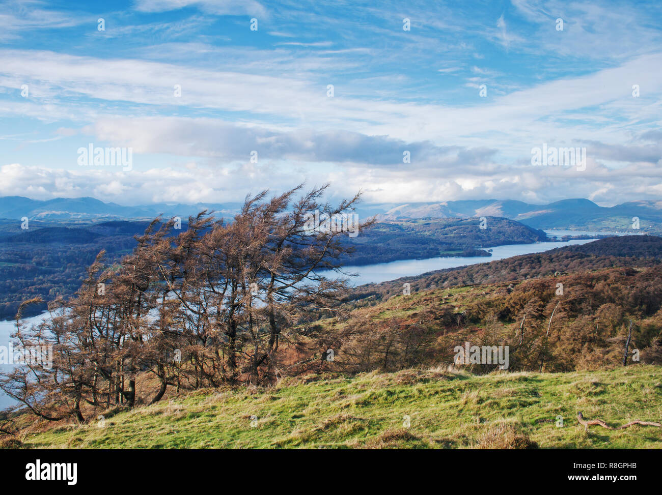 Distant Lakeland skies and fells, viewed from the slopes of Gummers How - Stock Image