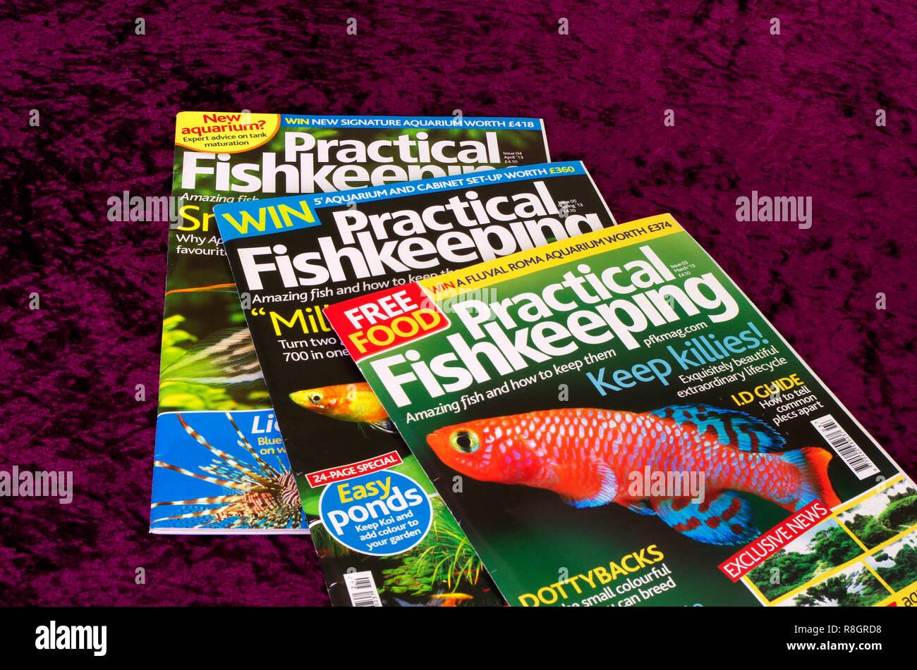 Practical Fishkeeping Hobbyists Monthly Magazine or Periodical, UK Stock Photo