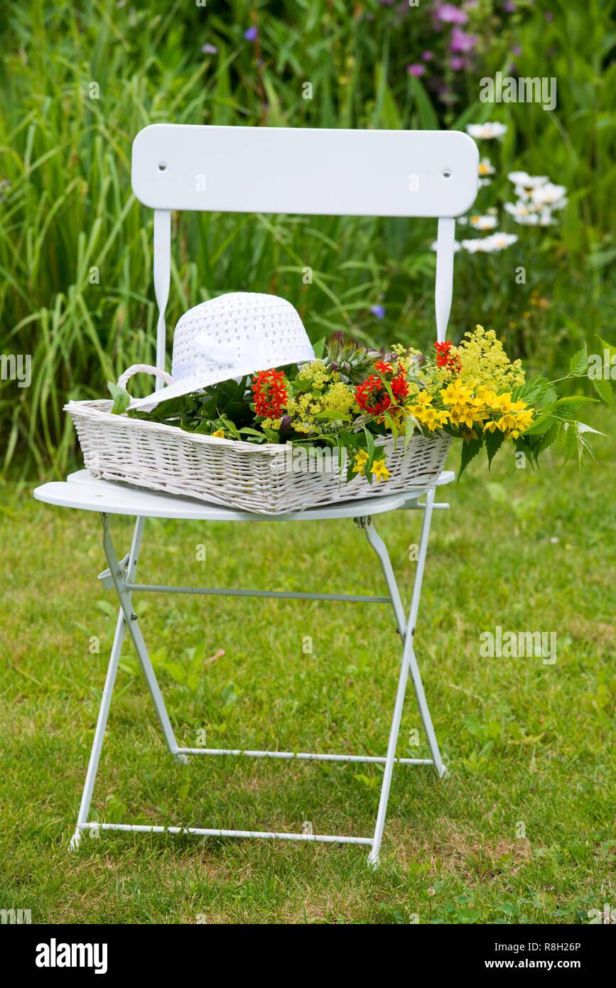 Gartenstuhl mit bunten Sommerblumen Stock Photo