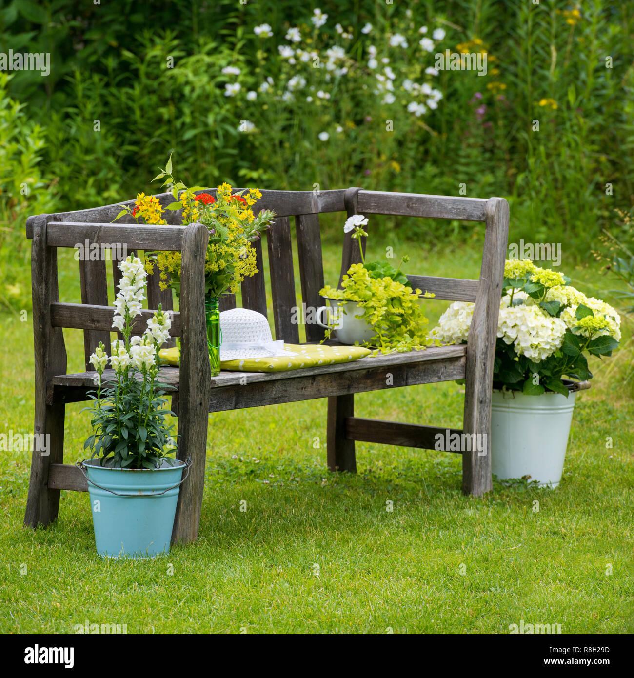 Alte Holzbank mit verschiedenen Blumen Stock Photo