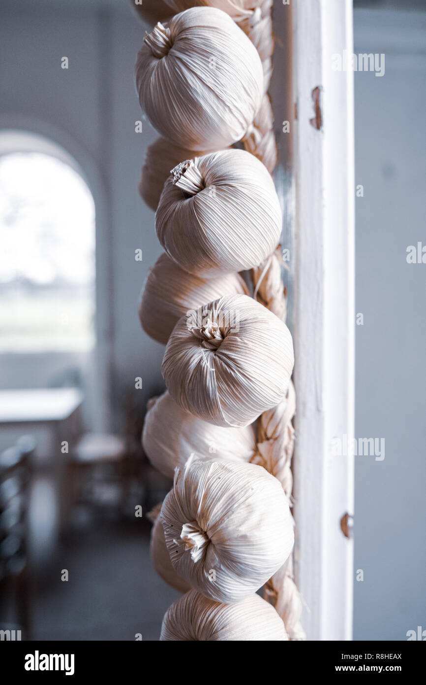 Braids of garlic hanging up in the kitchens of a stately home. - Stock Image