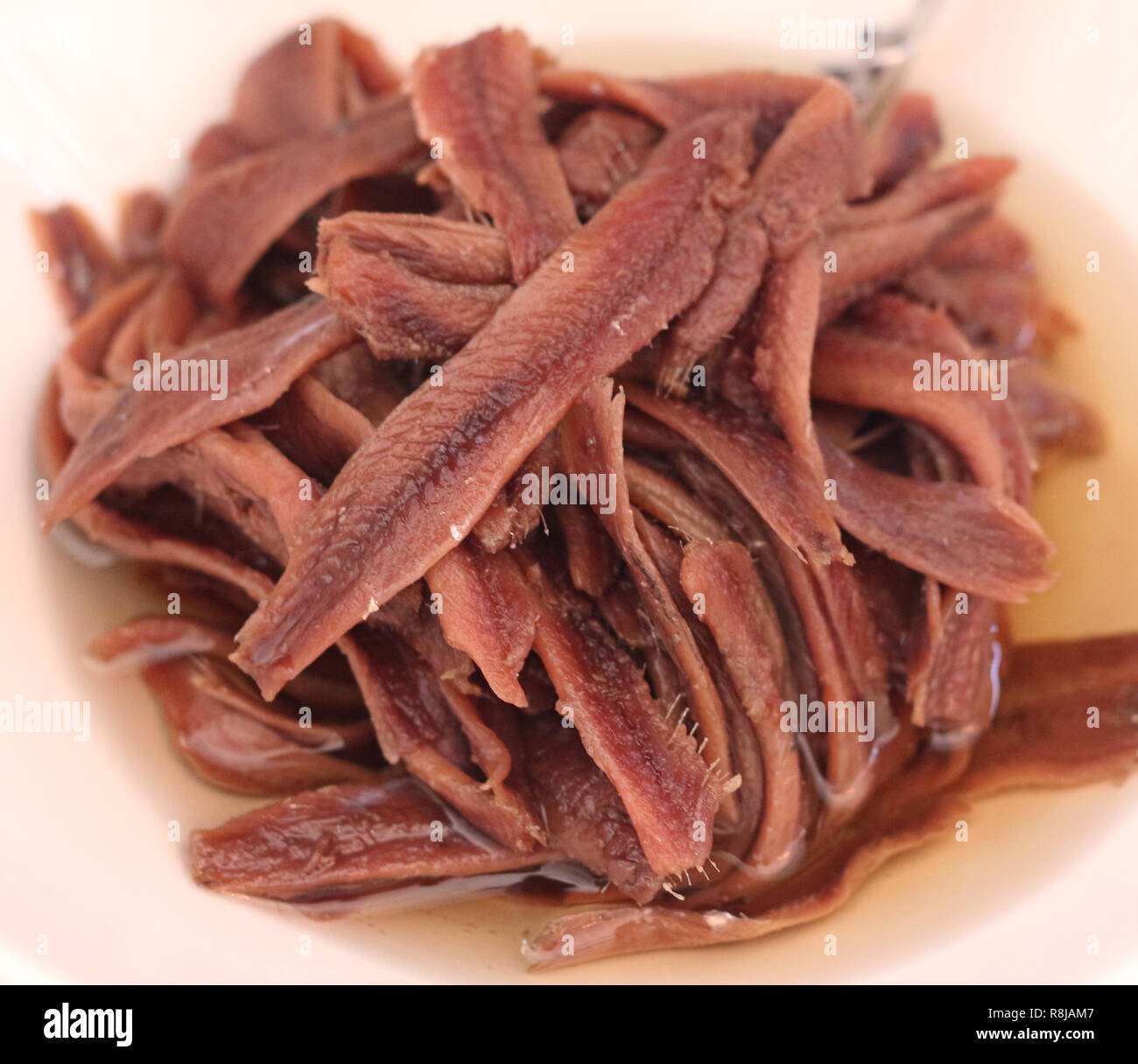 anchovy fillet in oil - Stock Image