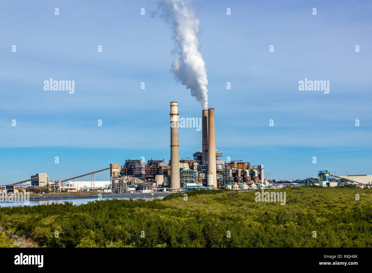 TECO Power plant with tall smoke stacks on a coastal plain. There is a manatee preserve and viewing center surrounding the plant. - Stock Image
