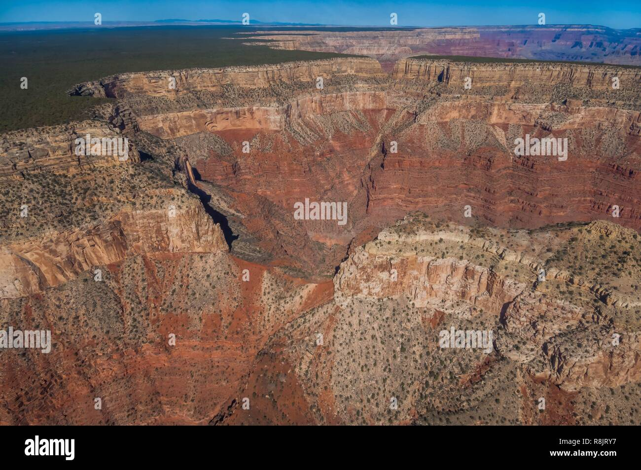 United States, Arizona, Grand Canyon National Park, helicopter view (aerial view) - Stock Image