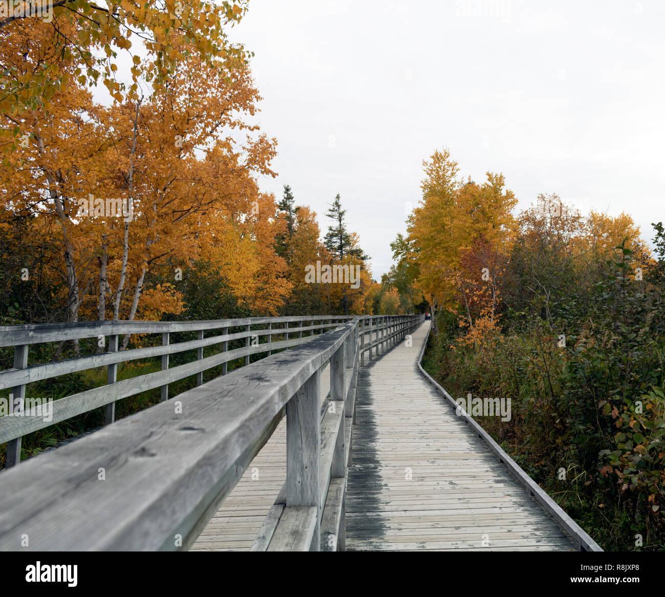 a long bridge passing trough the woods of Rimouski Stock Photo