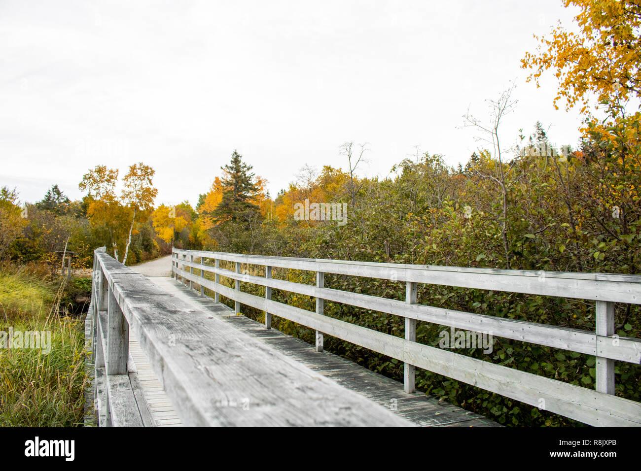 long wooden bridge in the woods of rimouski Stock Photo