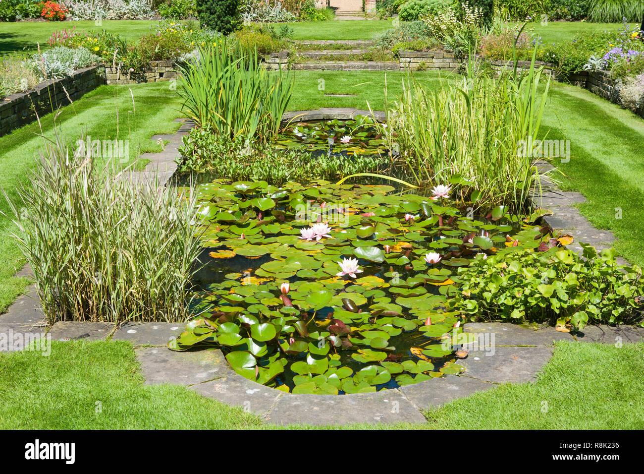 The Fellows Garden, Clare College, Cambridge University - Stock Image
