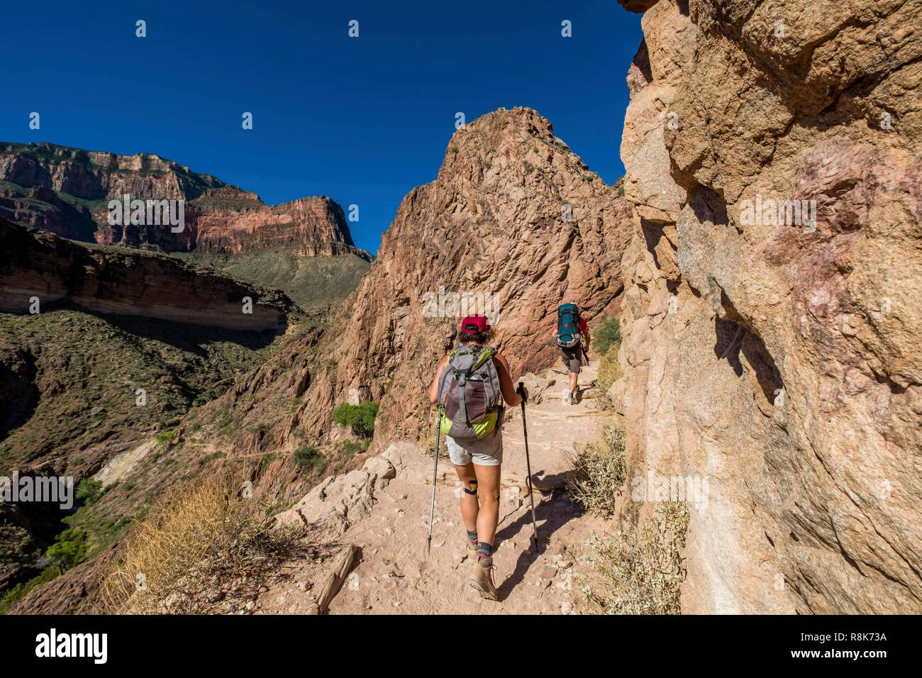 United States Arizona Grand Canyon National Park South Rim Hiking Up The Canyon From Colorado River Till Gd Canyon Village Stock Photo Alamy