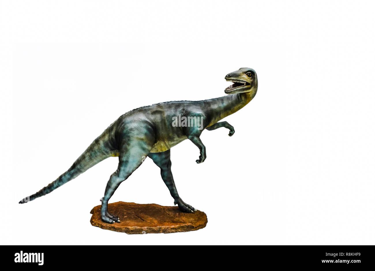 dinosaur isolated / dinosauria gallimimus statue isolated on white background - Stock Image